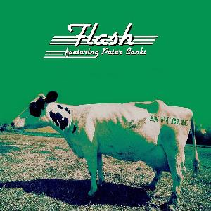 Flash - In Public CD (album) cover