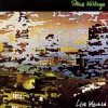 Steve Hillage - Live Herald CD (album) cover