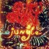 Guru Guru - Jungle CD (album) cover