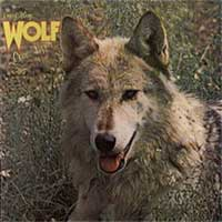 Darryl Way's Wolf) - Canis Lupus CD (album) cover