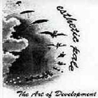 Esthetic Pale - The Art Of Development CD (album) cover