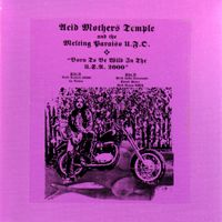 Acid Mothers Temple - Born To Be Wild In The USA 2000 CD (album) cover