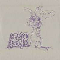 Bardo Pond - Slab CD (album) cover