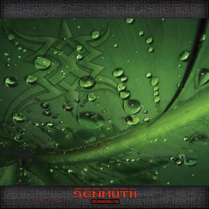 Senmuth - So(znanye)bitya CD (album) cover