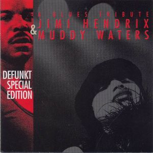 Defunkt A Blues Tribute - Jimi Hendrix & Muddy Waters CD album cover