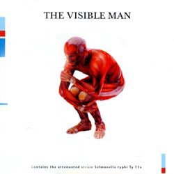 David Byrne - The Visible Man CD (album) cover