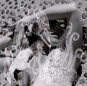 BJÖRK - Vespertine CD album cover