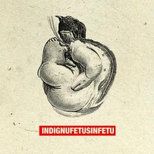 Indignu - Fetus In Fetu CD (album) cover