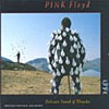 Pink Floyd - Delicate Sound Of Thunder CD (album) cover