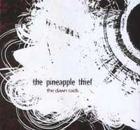 THE PINEAPPLE THIEF - The Dawn Raids (part Two) CD album cover