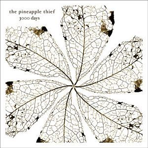 The Pineapple Thief - 3000 Days CD (album) cover