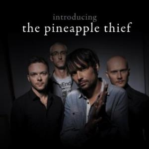The Pineapple Thief - Introducing ...the Pineapple Thief CD (album) cover