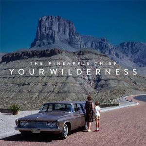 THE PINEAPPLE THIEF - Your Wilderness CD album cover