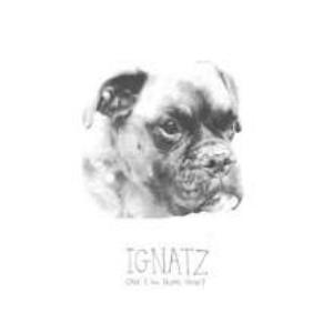 Ignatz - Can I Go Home Now? CD (album) cover