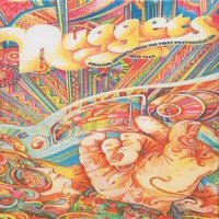 Various Artists - Nuggets From Nuggets : Choice Artyfacts From The First Psychedelic Era CD (album) cover