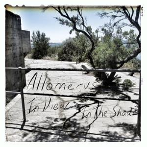 Allomerus - In View In The Shade CD (album) cover