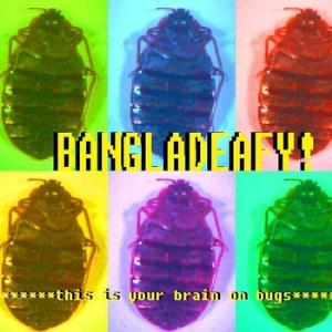 Bangladeafy - This Is Your Brain On Bugs CD (album) cover