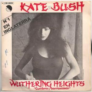 Kate Bush - Wuthering Heights CD (album) cover