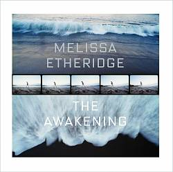 Melissa Etheridge - The Awakening CD (album) cover