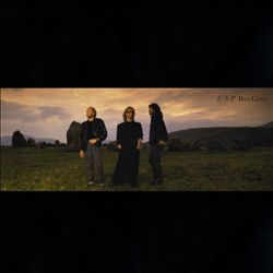 Bee Gees - E.s.p. CD (album) cover