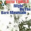 New Trolls - Night On The Bare Mountain CD (album) cover