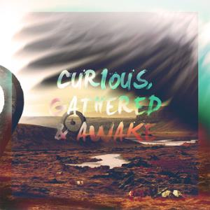 The Beauty The World Makes Us Hope For - Curious, Gathered & Awake CD (album) cover