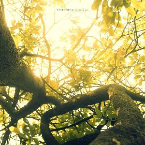 Handwrist - Branching Out CD (album) cover