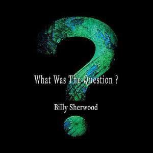 Billy Sherwood - What Was The Question? CD (album) cover